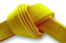желтый пояс.jpg