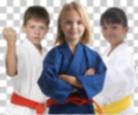 judo-karate-martial-arts-.jpg