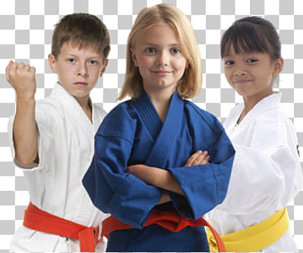 judo-karate-martial-arts-.jpg