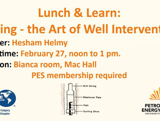 The Art of Well Intervention | Lunch and Learn