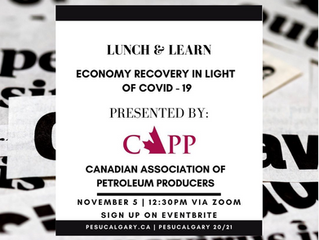 PES Lunch and Learn with CAPP