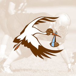 Canton Storks