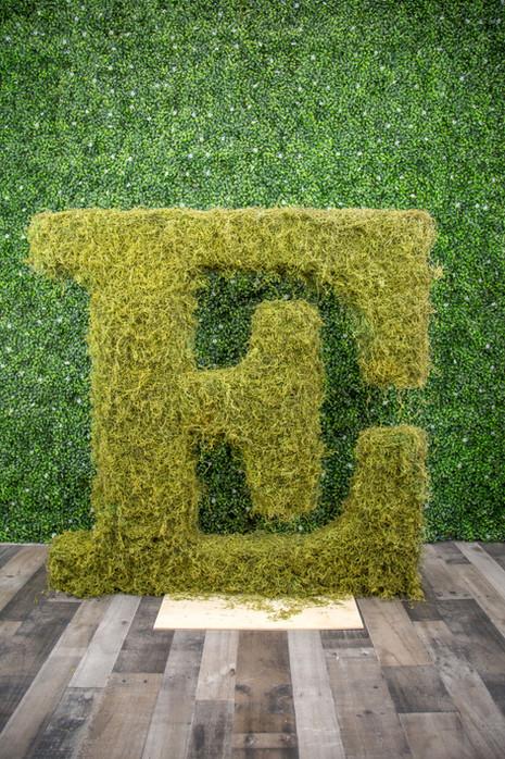 "Moss Covered ""E"""