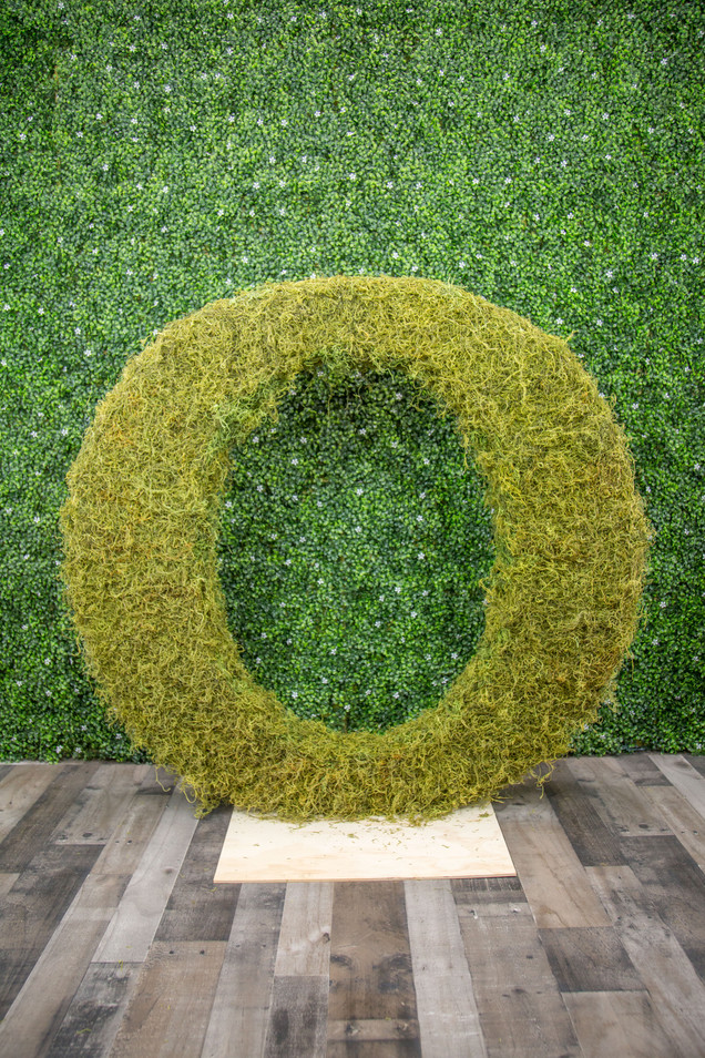 "Moss Covered ""O"""