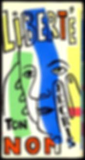 couverture colorée livre liberté j'écris ton nom