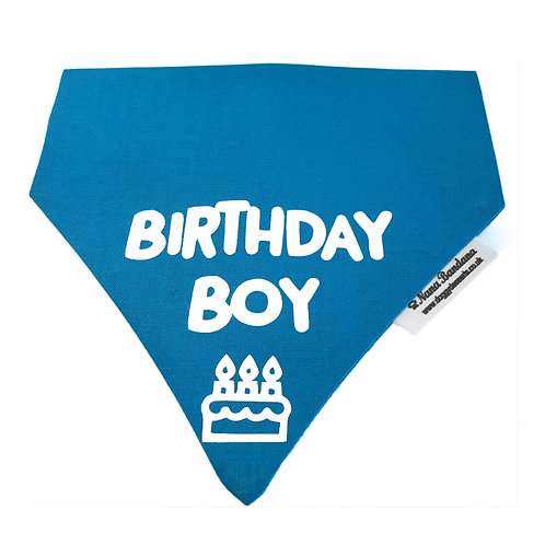 Birthday Boy Bandana