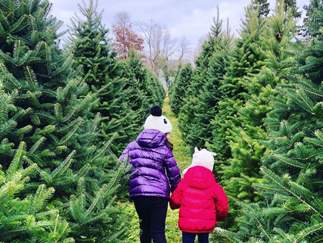 Tree Sale is cancelled but you can still support us!