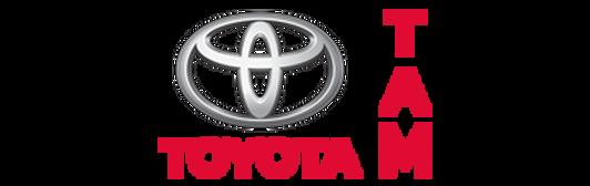 Gemelli Toyota Montélimar