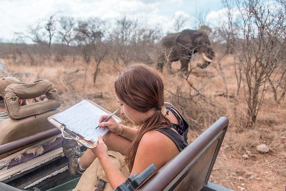 Obserwacje w Afryce