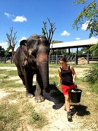 Ze słoniem