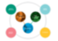 sustainability_diagram_draf04-42.png