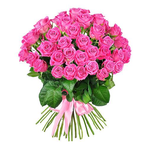 Rose rosa- Pink roses
