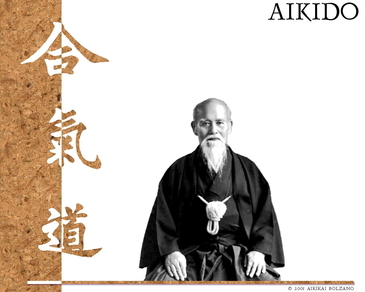 copy-of-aikikaibz_wallpaper_1280