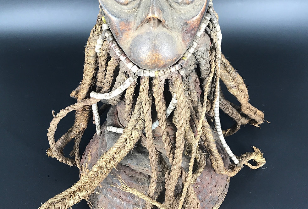 CIMIER BOULU SUD CAMEROUN