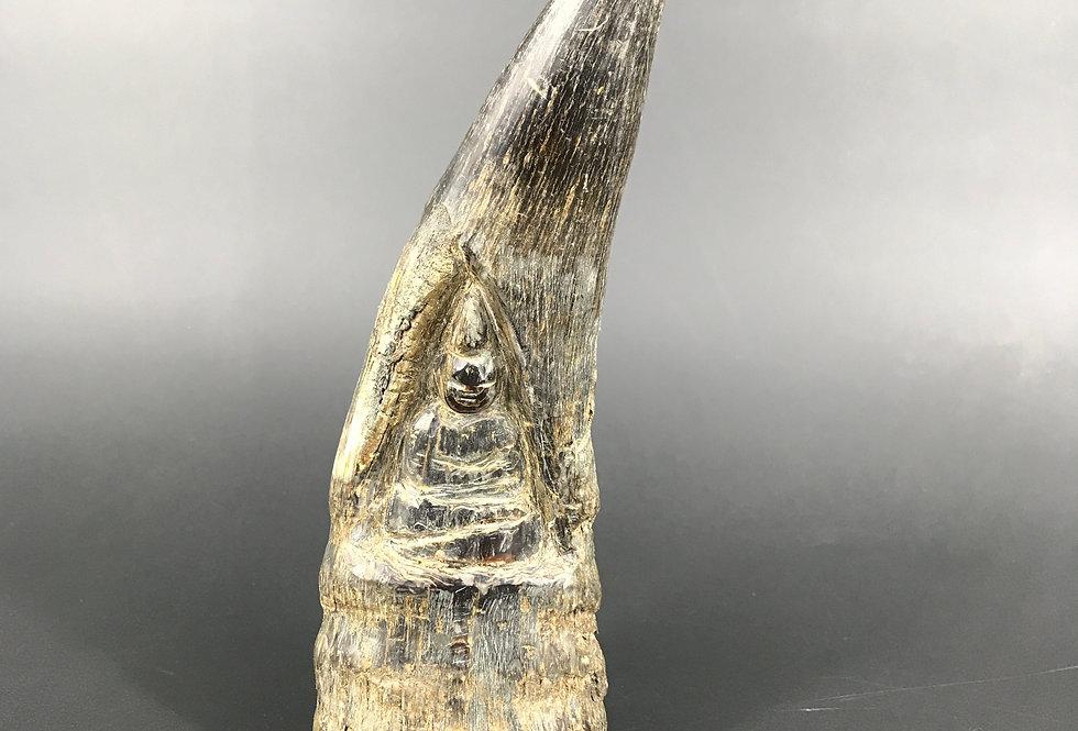 AMULETTE BUDDHA - CORNE DE YACK, XXème