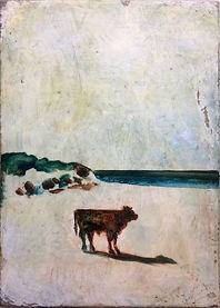 Bullock On A Beach