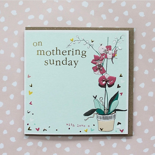 Molly Mae - Mother's Day - Mothering Sunday