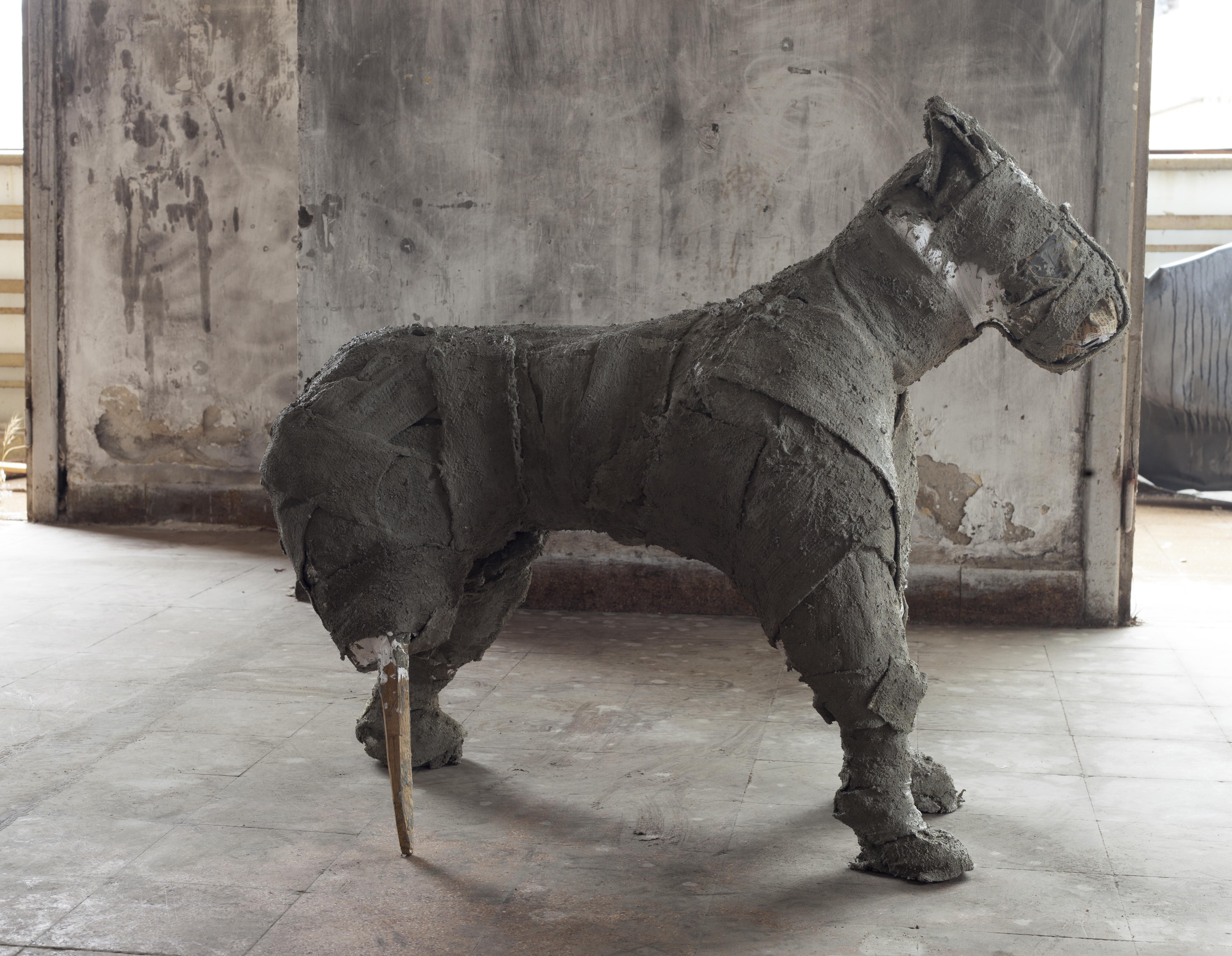 Dog ,2018 , 90x80x40 cm', Rags, plaster