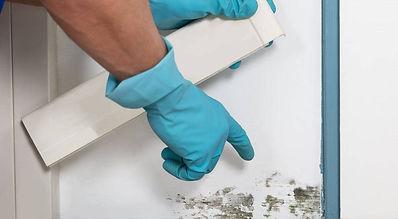 mold-inspection-1000x550.jpg