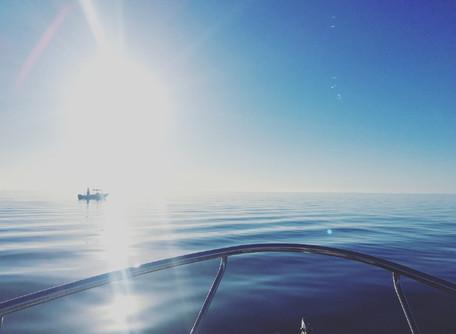 Rowey's Blog - Fishing at Port Clinton