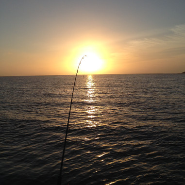 Rowey's Blog - Fishing Wedge Island