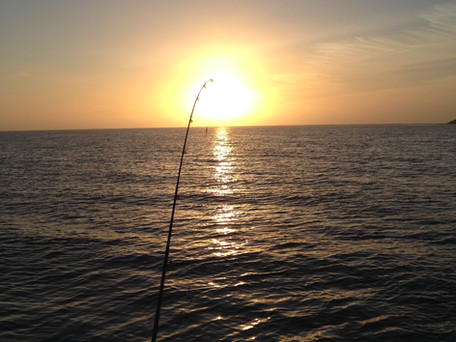 Rowey's Blog - Fishing Wedge Island