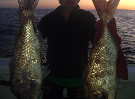 Catch Of The Week - 27/10/18