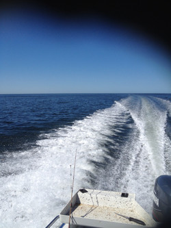 View from Rowey's boat