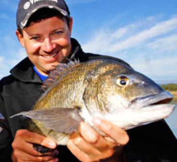 EcoWaste Famous Fisho - Andrew Hart