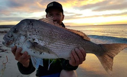 Caught and released 72cm Snapper