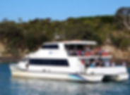 Gulf Harbour Ferry 2 via stuff.co.nz