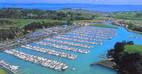 Gulf Harbour.jpg