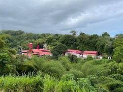 Distillerie JM Rhum Agricole Macouba Martinique Cave Henri IV Marc POTTIER