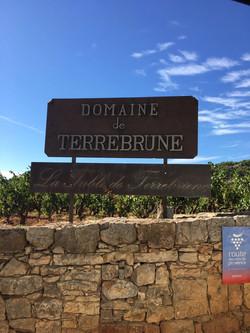 Domaine de Terrebrune sur l'appellation Bandol à Ollioules - Marc POTTIER - Cave Henri IV