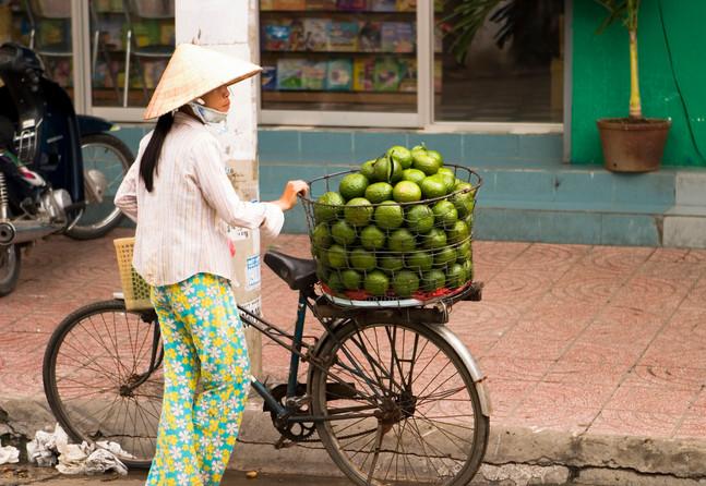 Street vendor, Hanoi