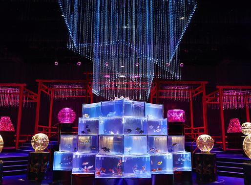 Not Your Average Fishbowl: The Art Aquarium Museum