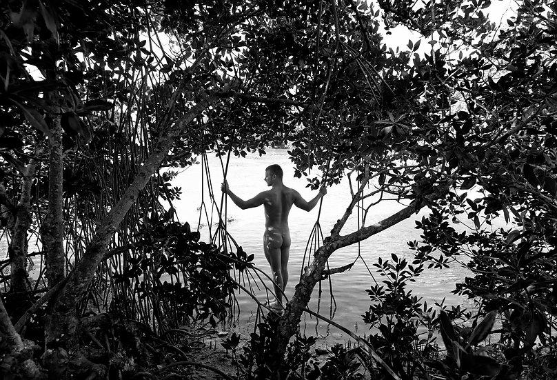 Mangrove Man
