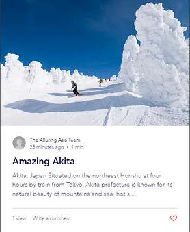 Blog Post Akita.jpg
