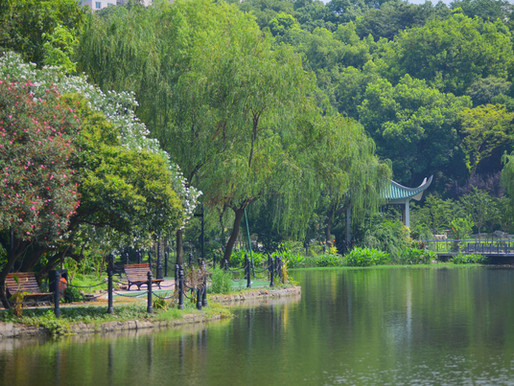 Hongkou Park