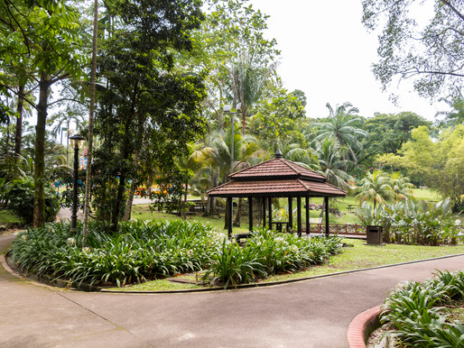 The Lake Garden, An Oasis in the City
