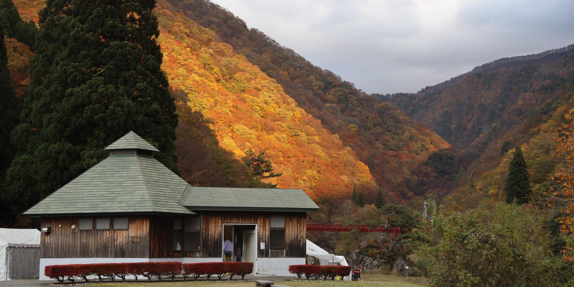 Dakigaeri Gorge Autumn Foliage