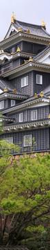 Okayama Catle