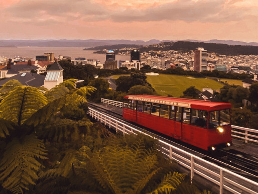 Where in the World: Wellington