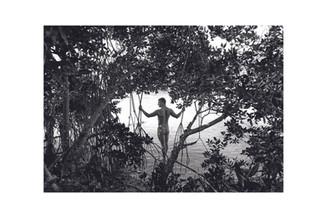Mangrove_Meditation.jpg