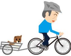 mycycle02.jpg