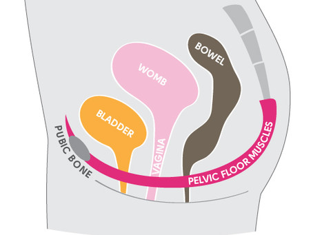 Simple survival tips for your pelvic floor.
