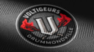 ©Andre_Roberge_Voltigeurs_close-up_text