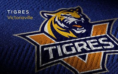 Work Tigres.jpg