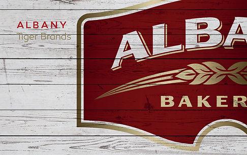 Work Albany.jpg