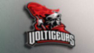 ©Andre_Roberge_Voltigeurs_Wall.jpg